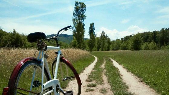 Francesco Renna - Biciclette al passeggio