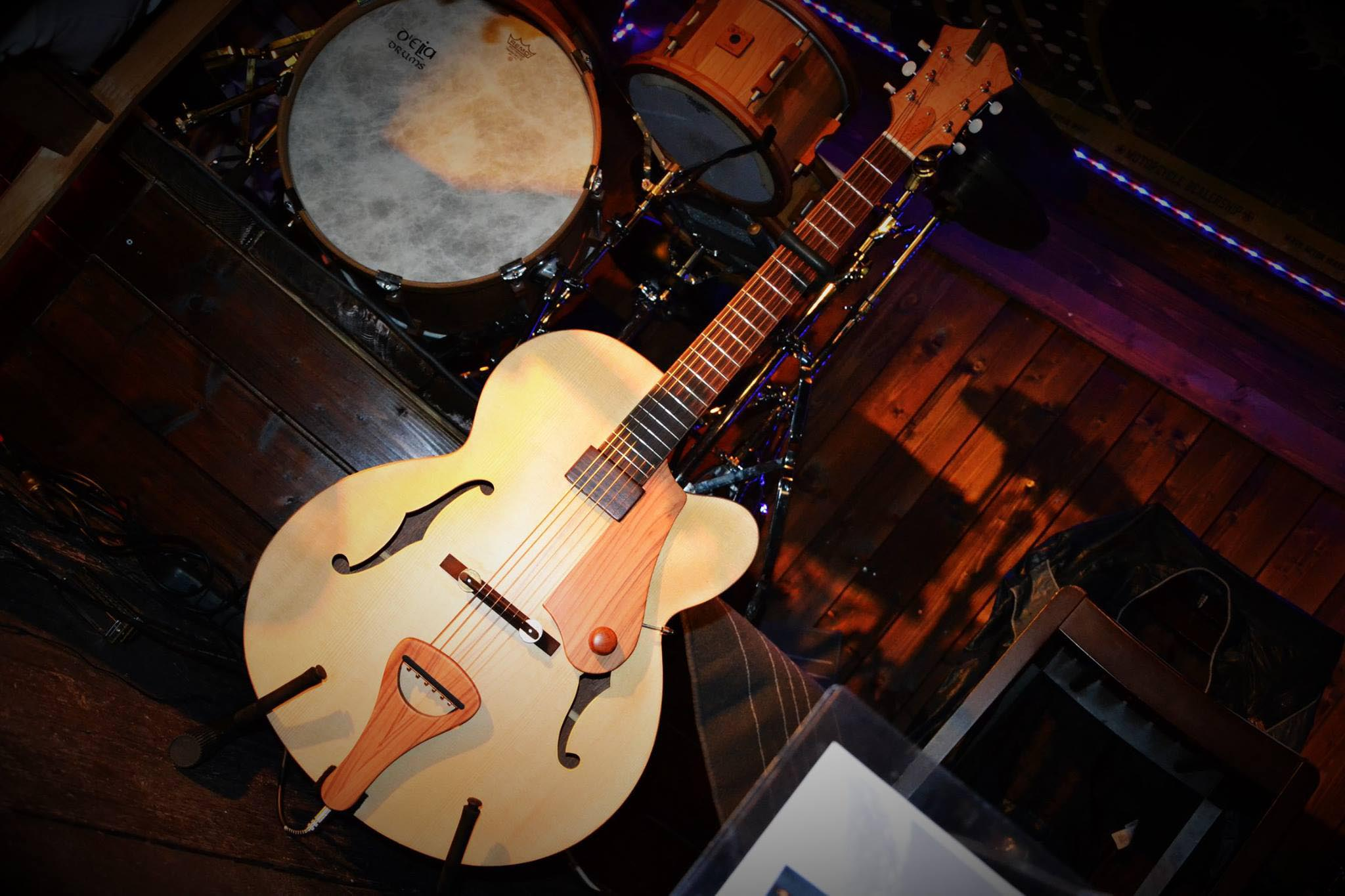 D'Elia Guitars & Drums